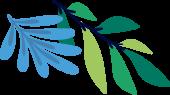 saaspik leaf